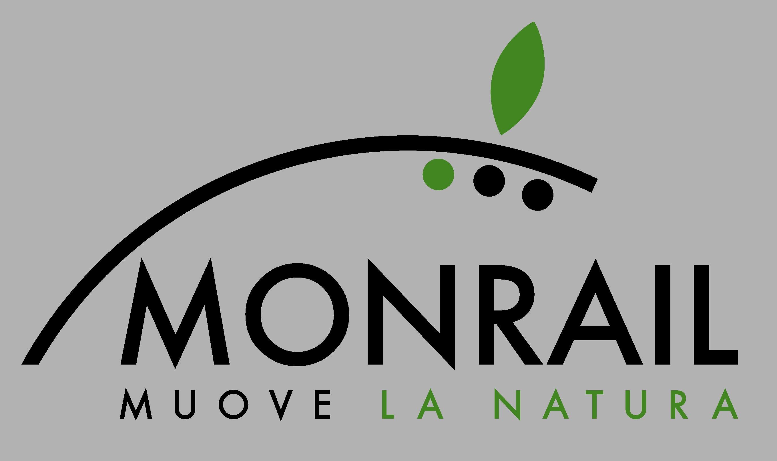 LOGO NMONRAIL
